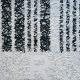 Barcode, Arthur Benjamins